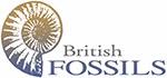 British Fossils